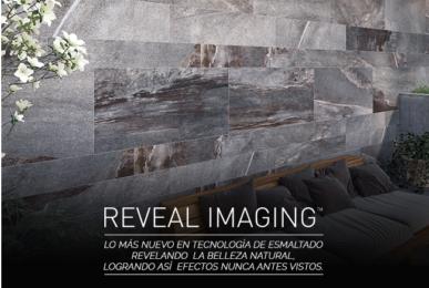 reveal_maging